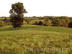 Kentucky Horse Farm Land and French Country house for sale   in the Bluegrass Region - Perryville, KY