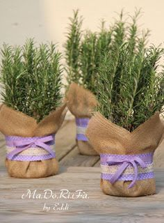Ma.Do.Ri.Fa.: Bomboniere.......green Wedding Table, Wedding Favors, Party Favors, Wedding Decorations, Floral Wedding, Wedding Flowers, Groom Accessories, Dollar Store Hacks, Bride Gifts