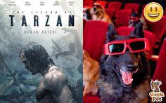 Vamos al cine :D #tarzan