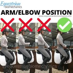 Helping Equestrian Riders Achieve Optimal Performance Through Rider Biomechanics. 10 FREE Rider Specific Exercises To Get You Started Today! Horseback Riding Tips, Horse Riding Tips, Trail Riding, Horse Exercises, Horse Care Tips, Horse Facts, Dressage Horses, Draft Horses, Riding Lessons