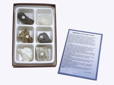 Minerals in our Food Collection 6 Piece Rock Kit Science Curriculum, Science Education, Similarities And Differences, Materials Science, Children's Literature, Earth Science, Student Learning, Rocks And Minerals, Kit