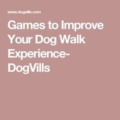 Games to Improve Your Dog Walk Experience- DogVills