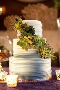 Absolutely gorgeous wedding cake with eco-chic air plants & succulents.