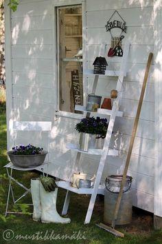 piha,puutarha,kukkia,tikkaat,hylly