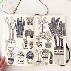 """Day 24, House Plant #CBDrawADay #creativebug #linedrawing #doodle #sketchbook #moleskineart #plant"""