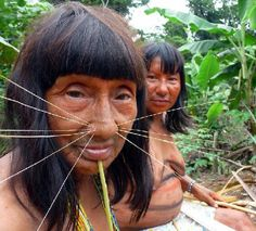 Two Matses women (known as Mayoruna people too). A remote indigenous tribe at the Peru-Brazil bo (Nov 2011)