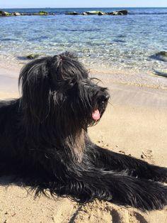 Noa at the beach