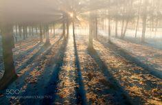 by teidseid. Please Like http://fb.me/go4photos and Follow @go4fotos Thank You. :-)