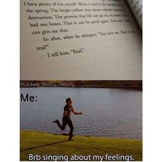 The Hunger Games Explorer, this describes me perfectly when I read that!!! SO SAD IT ENDED!!!