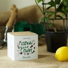 Lemon Tree Plant Growing Kit - Grow Your Own - Pots, Pellets, Markers, Pot Trays & Seeds - With DIY Instructions by Plants From Seed on Gourmly Lemon Tree Plants, Lemon Plant, Trees To Plant, Yellow Fruit, Plant Markers, Grow Your Own, Unique Recipes, Diy Kits, Marker