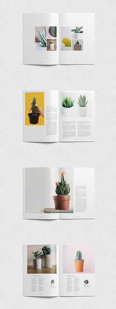 Design Portfolio Layout Print Brochures 39 New Ideas Design Portfolio Layout, Magazine Layout Design, Book Design Layout, Print Layout, Template Portfolio, Magazine Layouts, Indesign Portfolio, Editorial Design Magazine, Graphisches Design