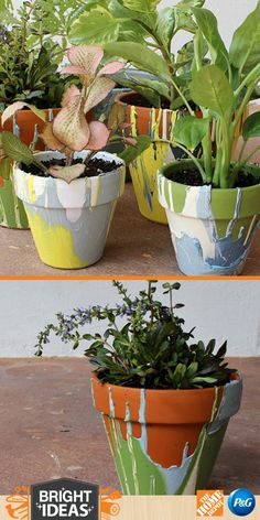 DIY: Painted Terracotta Pots by Ashley from Domestic Imperfection. Love the splashes of color for plants or herb pots this Spring! Metal Planters, Diy Planters, Diy Flowers, Flower Pots, Diy Garden Projects, Garden Ideas, Garden Crafts, Garden Pictures, Miniature Fairy Gardens