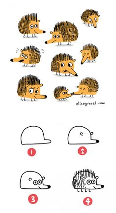 Elise Gravel Illustration • tutorial • drawing • hedgehog • dessiner • hérisson…