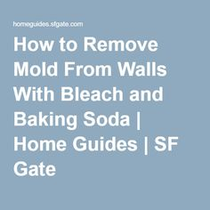 How to Care for an Indoor Bamboo Palm & Cut Its Dying Leaves Vinyl Tile Adhesive, Vinyl Tiles, Remove Mold From Walls, Indoor Bamboo, Bamboo Palm, Bamboo Plants, Indoor Plants, Chemical Free Cleaning, Shower Cleaner