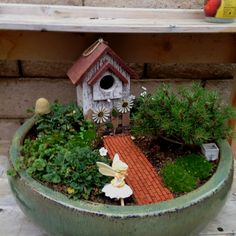 Gardening fairy gardens