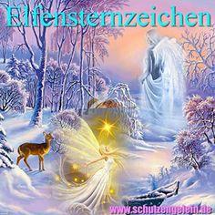 Elfensternzeichen + Glücksbringer, Sternzeichen Wassermann Bücher, speziell für Geburtsdatum Geburtstag Einhorncreme http://www.amazon.de/dp/B018AUIE8G/ref=cm_sw_r_pi_dp_DXRHwb1RPGVY9