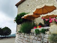 #lavender #provence #streetlavender #gourdon #france