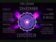 Chakras y Niveles de Conciencia | Antahkarana Majadahonda