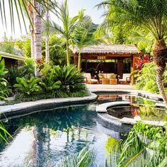 Backyard: After - Tropical Plants Retreat - Sunset.com