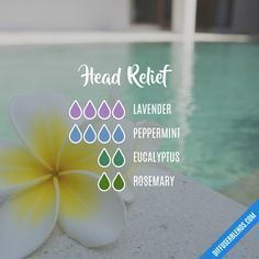 Head Relief - Essential Oil Diffuser Blend