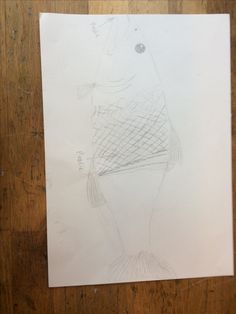Dit is mijn schets/idee van de vis hoe ik hem wil maken geworden. Het gaas ga ik vullen met plastic, omdat hij dat eet dus zit zijn buik daar mee vol. Ook wil ik hem plastic laten uitkotsen.