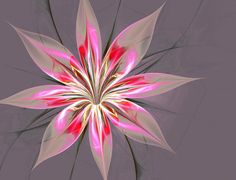 https://www.google.nl/search?q=beginner canvas flower