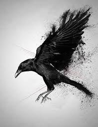 Image result for crow tatoos