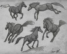 Today's How To Draw Horses video lecture was on drawing the entire horse in action. Im getting close to finishing the series. Look for the entire course in the coming weeks at CreatureArtTeacher.com #howtodrawhorses