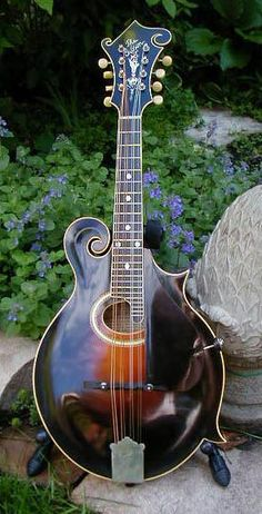 408 Best Mandolin Images In 2018 Music Instruments