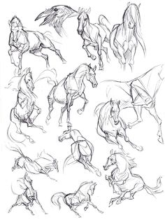 Kate Arrow Slide # Arrow Slide – The World Horse Drawings, Art Drawings Sketches, Animal Drawings, Drawing Animals, Sketch Drawing, Drawing Ideas, Pencil Drawings, Sketch Ideas, Drawing Art