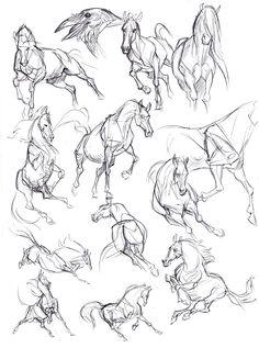 Kate Arrow Slide # Arrow Slide – The World Horse Drawings, Art Drawings Sketches, Animal Drawings, Drawing Animals, Sketch Drawing, Pencil Drawings, Drawing Art, Arte Equina, Horse Sketch