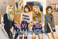 mamamoo new york, mamamoo 2016 comeback, mamamoo ideal type