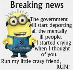 Minion Breaking News Funny Quote funny quotes quote crazy funny quote funny quotes funny sayings humor minion minions minion quotes quotes that make you laugh quotes that make you smile Funny Minion Memes, Minions Quotes, Funny Jokes, Minion Sayings, Funny Sarcasm, Fun Sayings, Hilarious Quotes, Funny Cartoons, Funny Texts