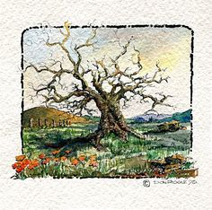"pen and ink with watercolor of tree in spring  small 3 1/2"" x 3 1/2"""