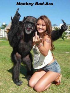 I need a monkey that flips people off