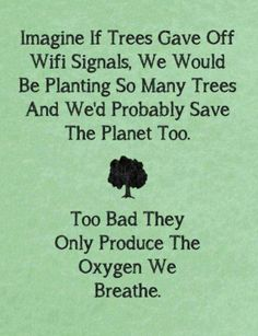 TOP IRONY quotes and sayings : Imagine if trees gave off wifi signals, we would be planting so many trees and we'd probably save the planet too. Too bad they only produce the oxygen we breathe. Great Quotes, Me Quotes, Inspirational Quotes, Daily Quotes, Wisdom Quotes, Irony Quotes, Humour Quotes, Motto Quotes, Nature Quotes