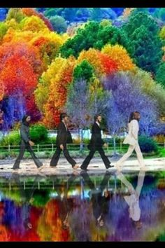 Abbey Road ~ The Beatles Abbey Road, The Beatles Members, Liverpool, Mad Movies, Beatles Art, Famous Photos, Walk This Way, Over The Rainbow, World