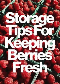 How to store strawberries, blueberries, and more to keep them fresh all season