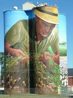 100' x 270', acrylic on 4 concrete silos, Colquitt, Georgia USA. This portrayal of the ʻeveryman' farmer studying his crop literally towers over all. It is intended to function on many levels; as an expression of the work ethic and spirituality of those who work the land; as a benevolent figure watching over the community, and as a representative focal point for the district and its stories . An Icon of the South