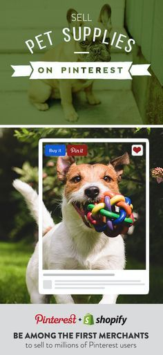 Sell pet supplies on Pinterest with Shopify. Create your Shopify online store and start selling on Pinterest today!