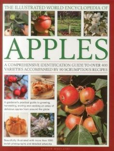 The Illustrated World Encyclopedia of Apples: A comprehensive identification guide to over 400 varieties accompanied by 60 scrumptious recipes: Andrew Mikolajski: 9780754820666: Amazon.com: Books