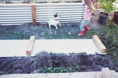 ohdeardrea: Our Raised Beds: Easy Metal Raised Planter Beds, Raised Garden Beds, Raised Beds, Veg Garden, Garden Fencing, Diy Projects To Try, Garden Projects, Garden In The Woods, Home And Garden