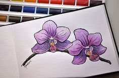Orquidea drawn with Pentel Brush Pen and watercolors, via Flickr.