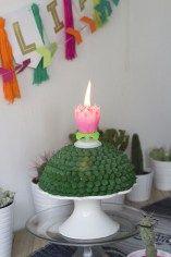 Festa Infantil Novo Boho - Cactos Plantas 5