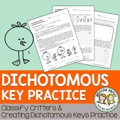 dichotomous key template.html