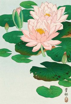 """nae-design: """" Water Lilies by Ohara Koson (Japanese, 「睡蓮」小原古邨… Lilies Drawing, Lily Pad Drawing, Water Lilies Painting, Ohara Koson, Japon Illustration, Art Asiatique, Japanese Flowers, Japanese Lotus, Japanese Painting"""