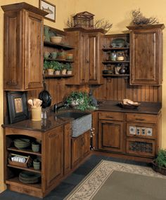 Love the combo of cabinets and shelves; the stained back splash; mini herb garden;  & hanging up the cast iron skillets.