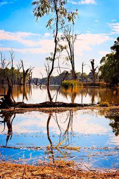 Murray River, Mildura  photo by Julian Paxton
