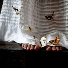 after checking every little detail the butterfly fairies finally approved her gown