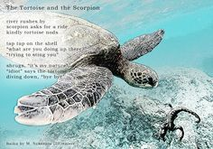 haiku by M. Nakazato LaFreniere, folk tale, #haiku, #senryu, haiku, senryu, poem, poetry http://cactushaiku.com/daily-haiku-senryu-scorpion/